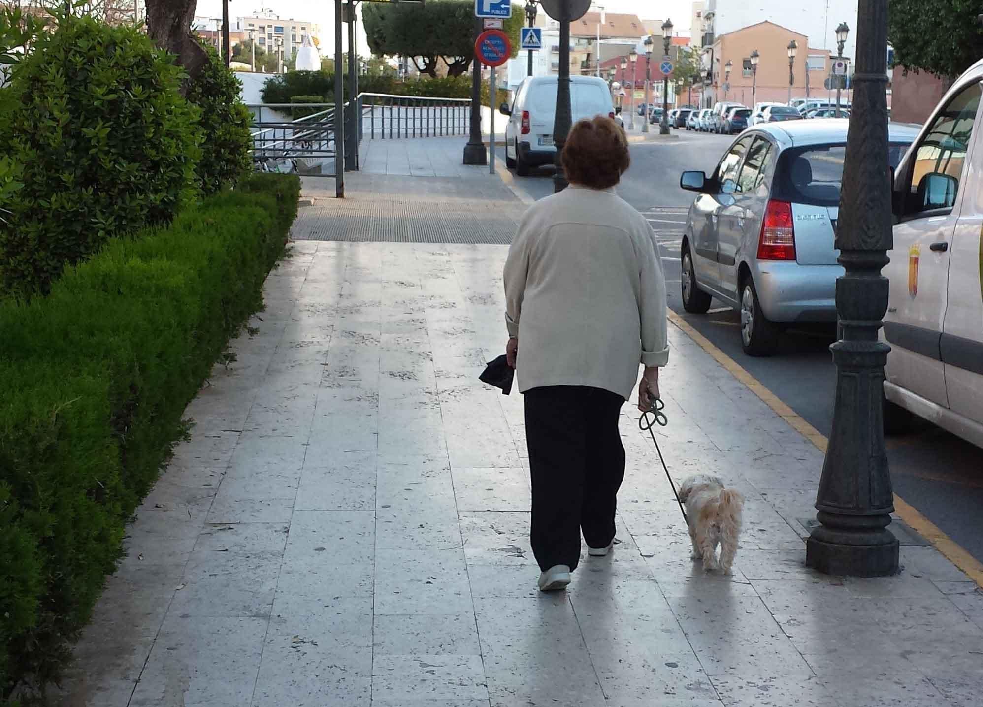 Sagredo hará un referéndum para que Paterna decida si quiere un censo canino de ADN