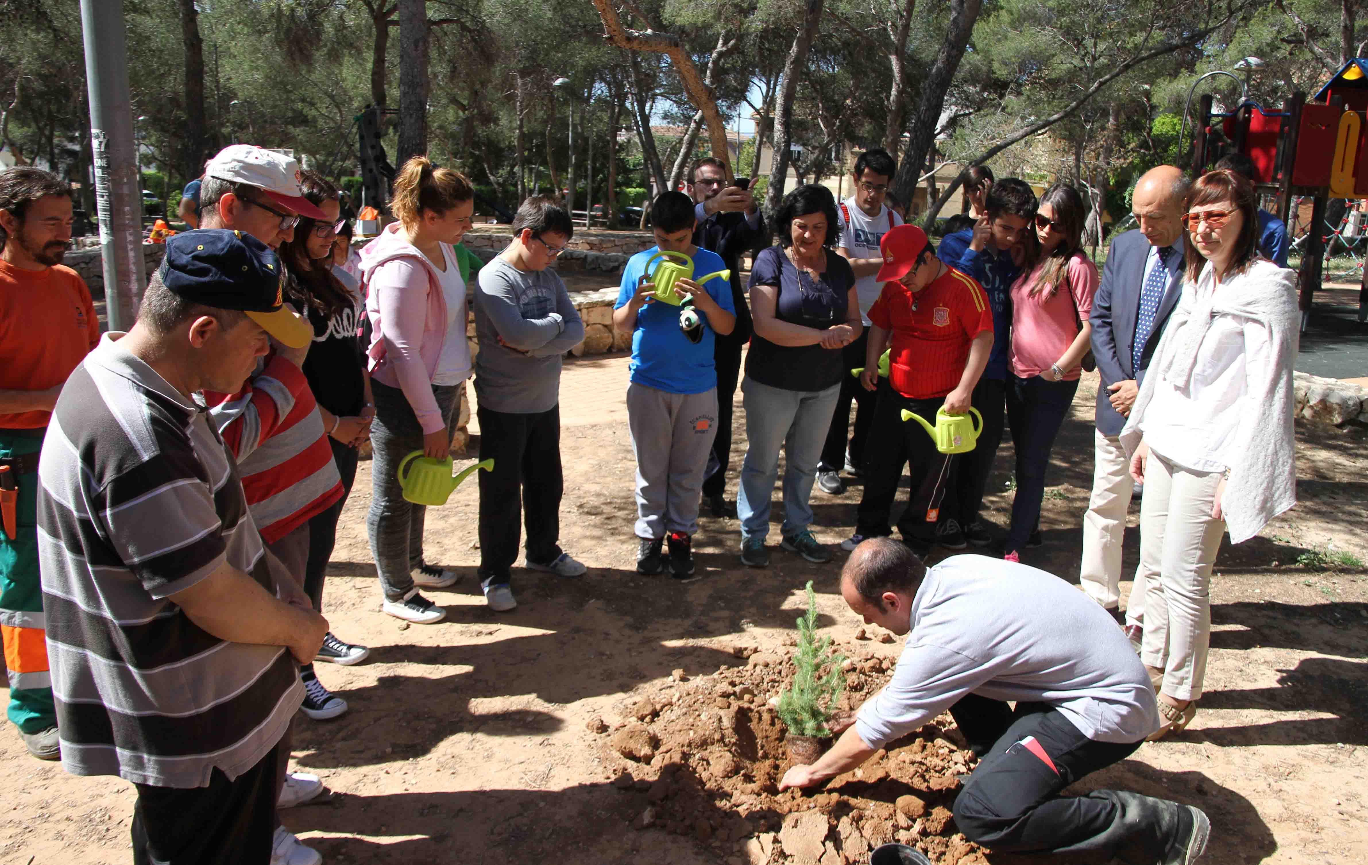 590 árboles para repoblar Paterna y mitigar los daños del tomicus
