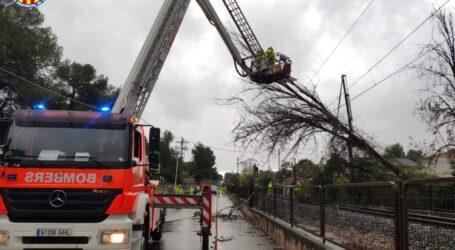 Cau un arbre sobre les vies del metre en la zona de la Canyada