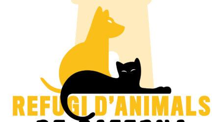 El Refugio de Animales de Paterna estrena web para fomentar las adopciones