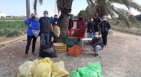 Almàssera organiza una jornada de limpieza de la zona del barranco del Carraixet a su paso por el municipio